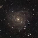 IC342 - The Hidden Galaxy,                                Michel Makhlouta