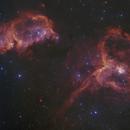 Heart and Soul Nebula - ESO DSS2 RVB - 20 panel mosaic,                                  Daniel Nobre