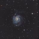 M101,                                Ludovic