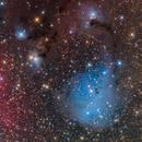 "IC 447 ""Dreyer's Nebula""- Deep Sky West Remote Observatory,                                Deep Sky West (Lloyd)"