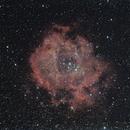 NGC 2246 Rosettennebel,                                Dennis Kaiser