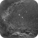 Flying Bat and Squid nebulae Sh2-129/Ou4 narrowfield (m-sho, c-shorgb),                                Ram Samudrala