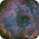 NGC2237 Rosette,                                Jeff Kraehnke