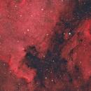 NGC-7000 & IC-5070,                                Patrick Dubé