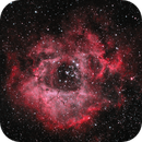 Rosette Nebula (HOO) (2020),                                Daniel Tackley
