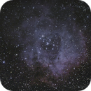 The Rosette Nebula, My first ever guided image,                                Dale Dare