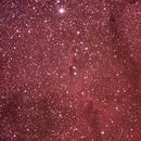 IC 1396 Neb. proboscide di elefante,                                Federico Bossi