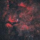 Gamma Cygni and Crescent Nebula,                                Poochpa