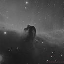 The Black Horse,                                Edoardo Luca Radice (Astroedo)