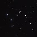 NGC 1981,                                Gary Imm