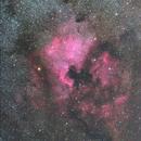 NGC7000,                                Tetsuya Harano