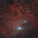IC 405 Flaming Star Nebula,                                Enrico Scheibel