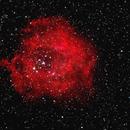 NGC 2237 Rosette Nebula,                                erossi40