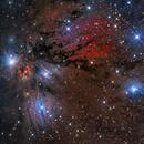 NGC 2170 - NGC 2182 - NGC 2183   – Remarkable faint nebula complex,                                Terry Robison