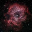 NGC 2244 The Rosette Nebula,                                G400