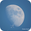 Fly Me to the Moon Animation,                                Damien Cannane