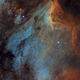 Pelican Nebula - IC 5070 - Hubble Palette,                                Thomas Richter