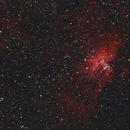 M16 - Eagle Nebula,                                Craig Rodgers