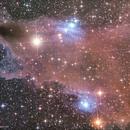 The Dark Shark Nebula - LDN 1235,                                Alessandro Merga...