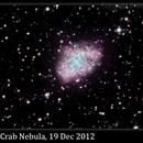 M1, Crab Nebula, 19 Dec 2012,                                David Dearden