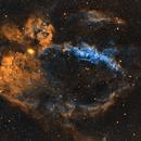 SH2-157 Lobster Claw Nebula in SHO,                                Johan Bogaerts