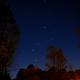 Orion in Spring,                                Van H. McComas