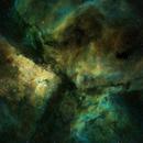 NGC 3372   Carina Nebula,                                Roger Bertuli