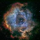 Rosette nebula in Hubble palette SHO,                                Mike