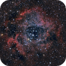 Caldwell 49 - Rosette Nebula,                                rgenier