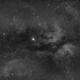 IC1318 Sadr region Ha,                                Steve Ibbotson