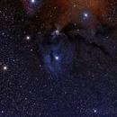 IC4604 in Scorpius,                                John Bozeman