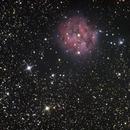 IC5146,                                Oliver Runde