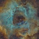 Rosette Nebula in SHO,                                Chad Andrist