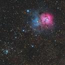 M20 Trifid Nebula - NGC 6531,                                Jerry Macon