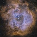 NGC 2237,                                Pidrman Jan
