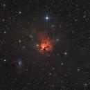 NGC 1579 - The Northern Trifid,                                Bernhard Zimmermann