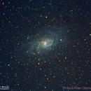 Crop of the Triangulum Galaxy (M33),                                Hans-Peter Olschewski