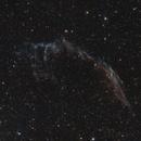 Veil Nebula,                                Paul Deeter