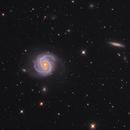 M100 with Supernova SN 2019ehk,                                Ray Liao