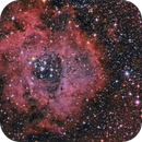 NGC 2237 - Rosette Nebula,                                Corrado Gamberoni