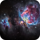 M42 - Orion Nebula,                                FedericoDS