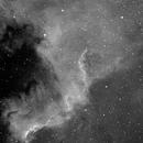 NGC7000 of last summer,                                tintin2010