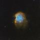 NGC 2174 - Monkey Head Nebula,                                Serge P.