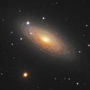 NGC 2841 in Ursa Major,                                Steve Milne
