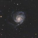 M101 The Pinwheel,                                Cfreerksen