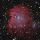 NGC2174 LRGB,                                Thomas Richter