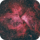 Eta Carinae Nebula,                                Samuel Müller