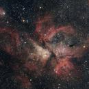 Carina Nebula,                                CarlosSagan