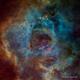 The Rosette Nebula - Hubble Palette - Tone Map,                                Eric Coles (coles44)