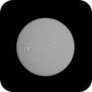 Sun H-Alpha, AR 2781 November 7, 2020,                                Ennio Rainaldi